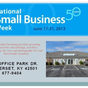 National Small Business Week client focus Paw Prints Grooming